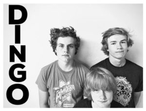 Dingo band photo